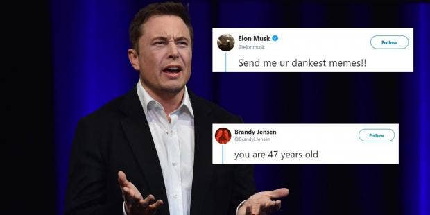 elon musk asked twitter to send him their dankest memes and it