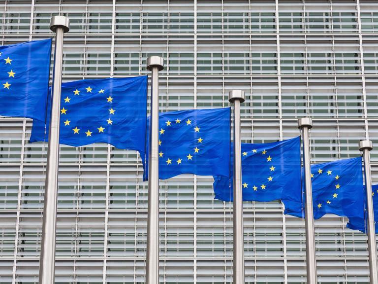 web-eu-flags-rex.jpg