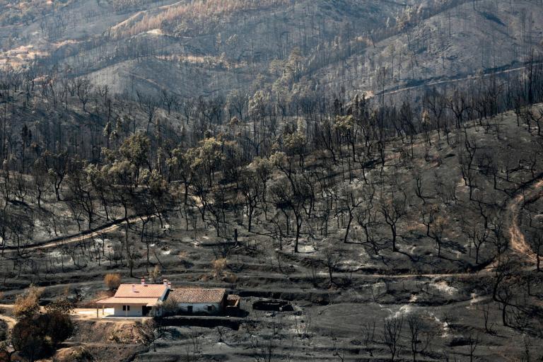 portugal-fires.jpg