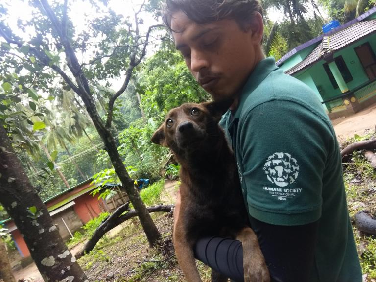 Kerala floods: Rescue workers trying to save thousands of animals at risk of drowning