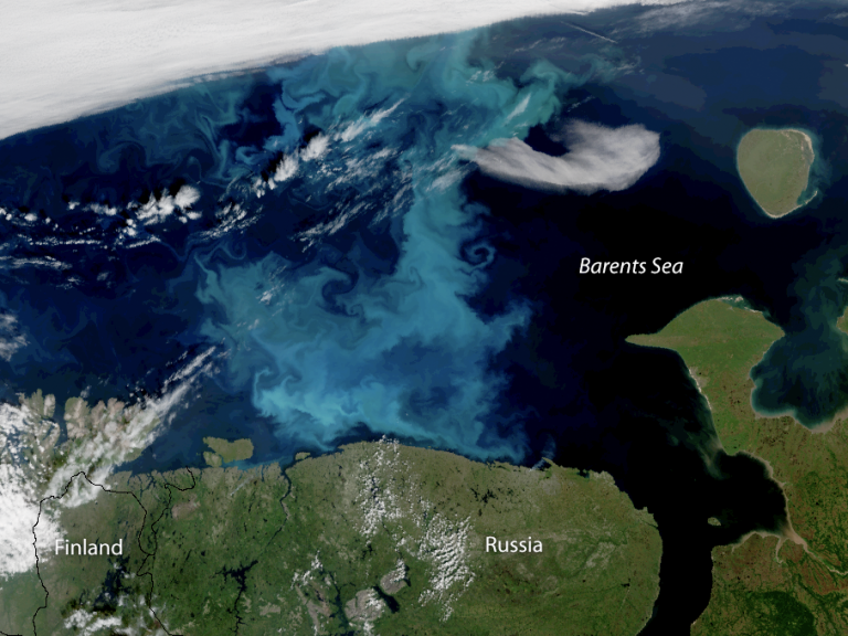phytoplankton-barents-sea-noaa.png