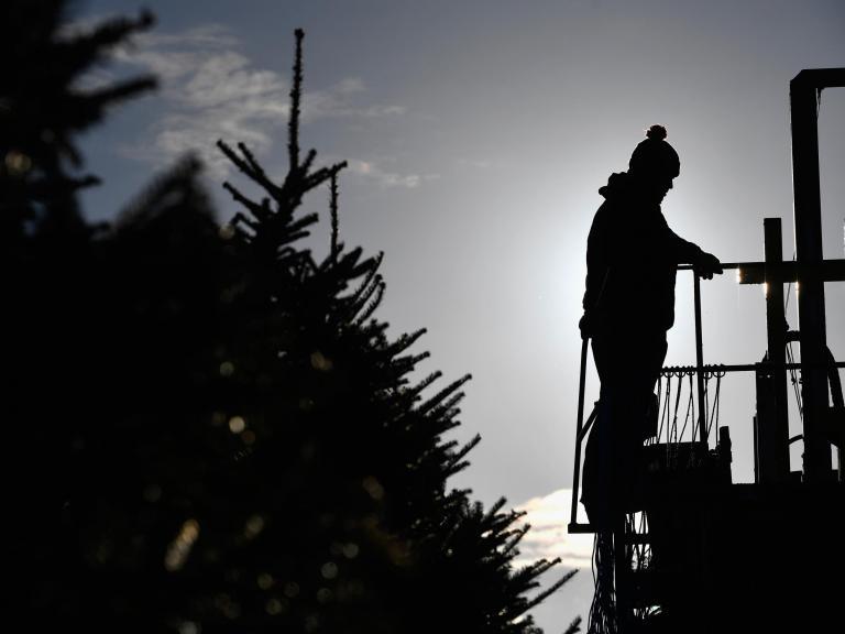 christmas-tree-grower.jpg