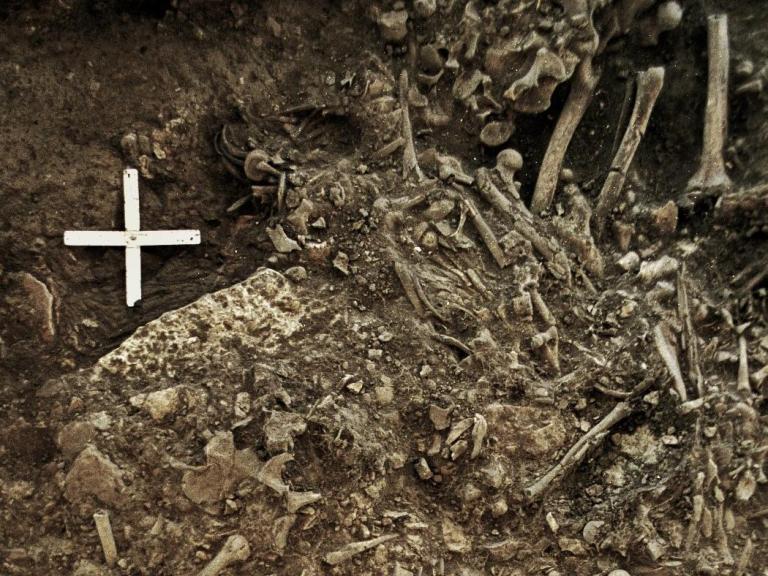ancient-bones-sweden.jpg