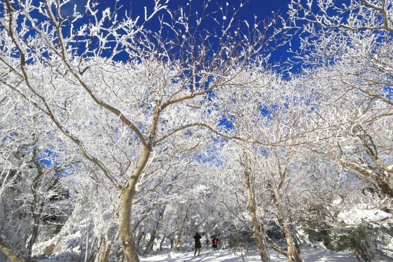 winter-weather-25.jpg