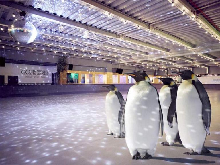penguin-skating.jpg