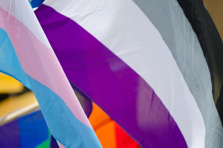 asexual-flag.jpg