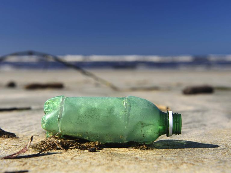 plastic-bottle-wsahed-up-beach.jpg