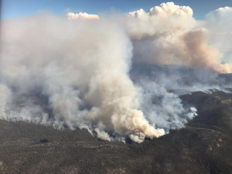 canberra-bushfires.jpg