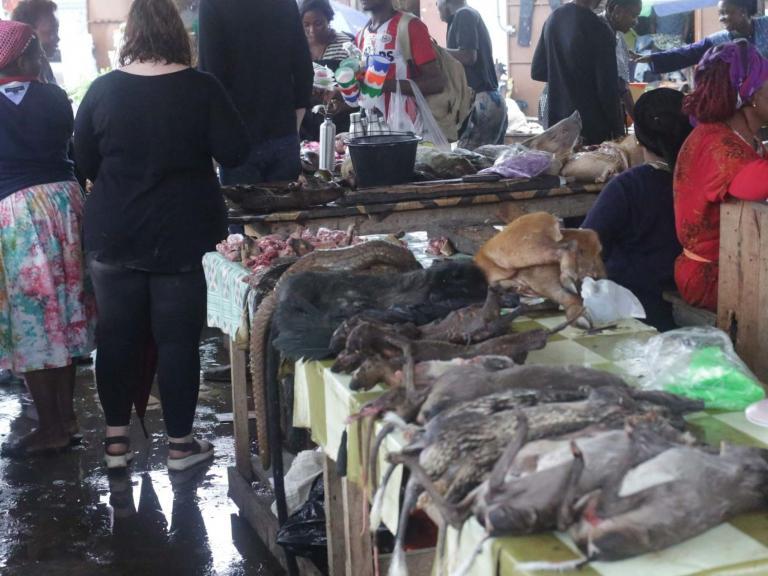 wildlife-market-pangolin.jpg
