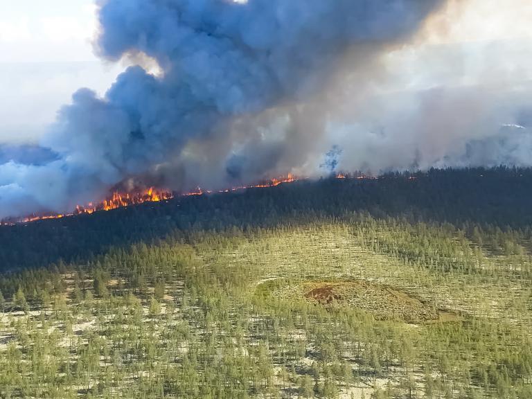 wildfire-siberia.jpg