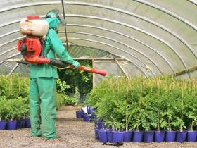 Pesticide Exposure In Pregnancy Linked >> Pesticides linked to birth abnormalities in major new ...