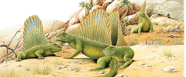 Amphibians and reptiles: how terrestrial living was ...