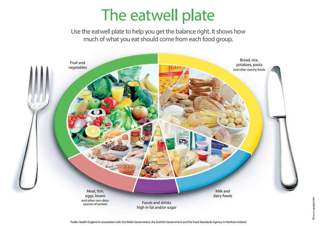 Image result for eatwell plate
