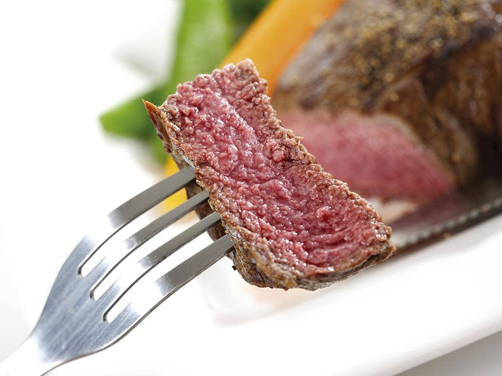 Protein Beef Properties, Features and Benefits