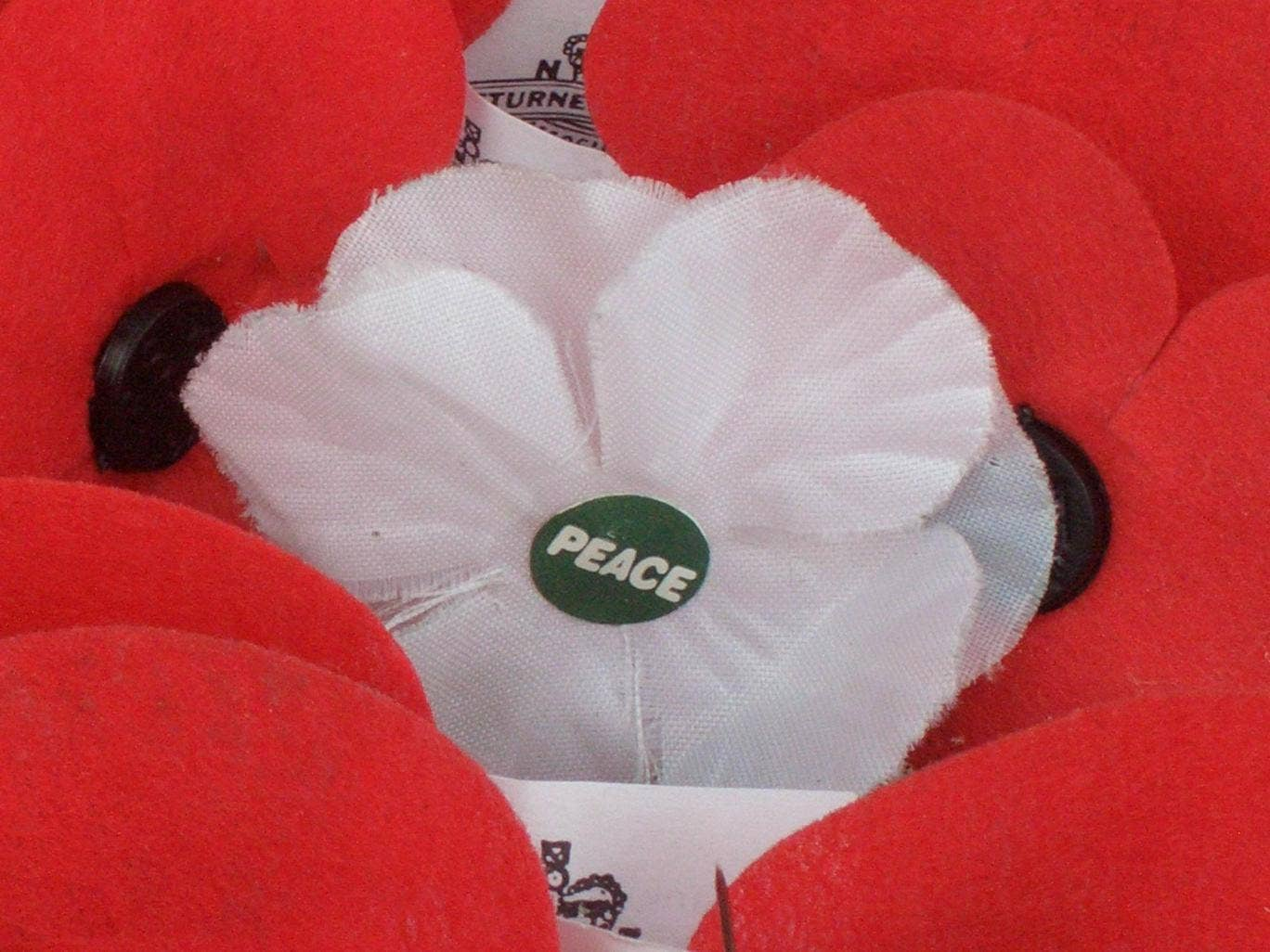 White Pacifist Poppies Allowed By St John Ambulance For First Time