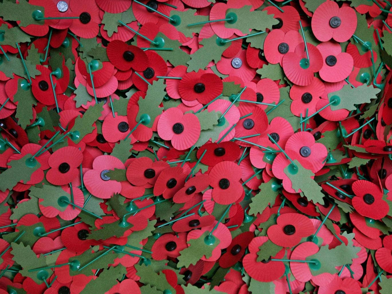 Veterans Advice On How To Wear Remembrance Day Poppy Is Shared