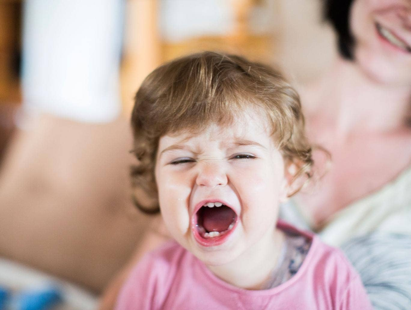 WANTED: tantrums, tears and toddlers