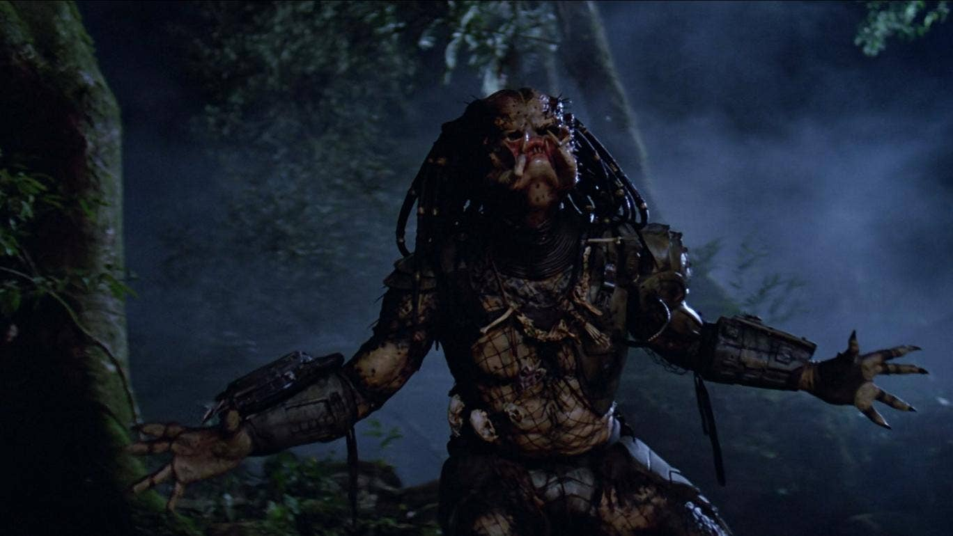 https://static.independent.co.uk/s3fs-public/styles/story_large/public/thumbnails/image/2016/06/02/10/the-predator.jpg