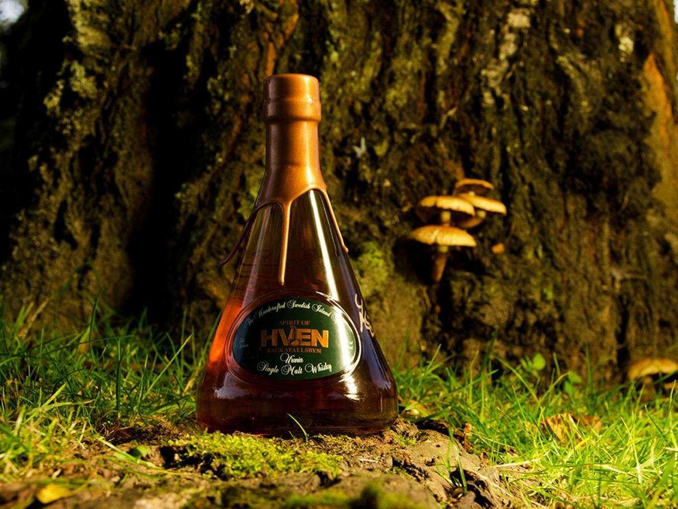 Advise good wood spirits for women, that it is direct an unusual smell. I have a molecule