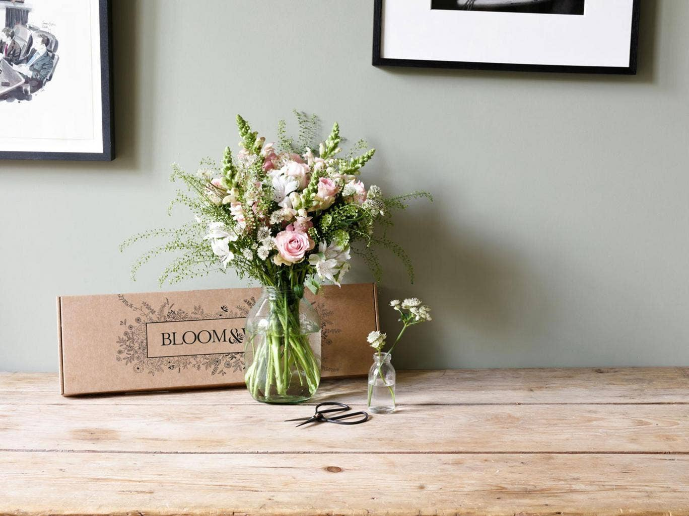 8 best letterbox flowers the independent izmirmasajfo