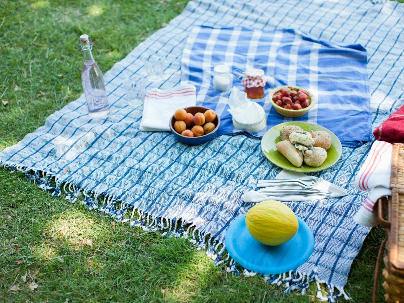 Optimum thermoware for picnics and walks 86