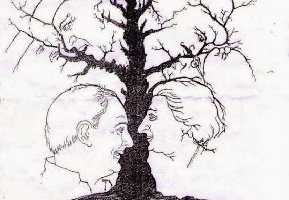 can you work out how many faces are hidden in the tree the internet