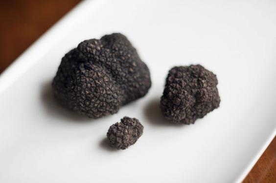 British-Truffle.jpg