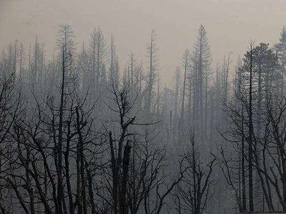 california-fire-2.jpg