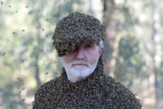 4625253-low_res-ultimate-swarm.jpg