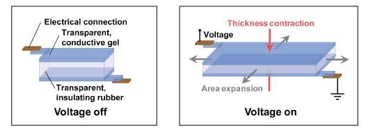ionics-diagram.jpg