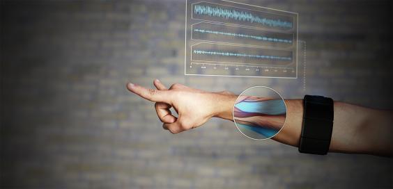 arm_and_signal.jpg