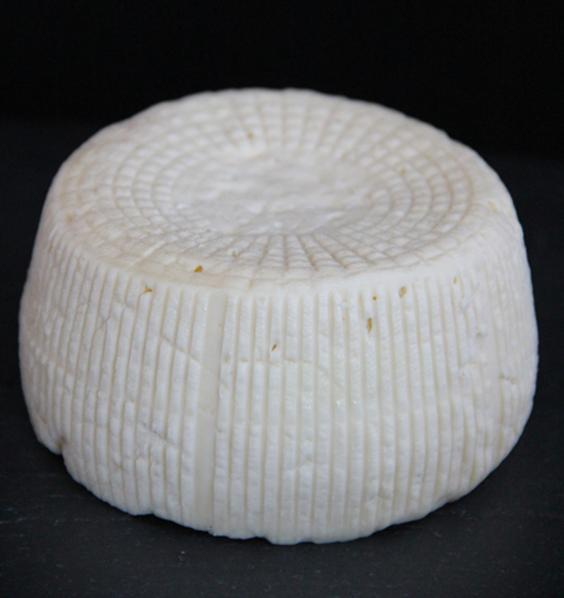 human-cheese.png
