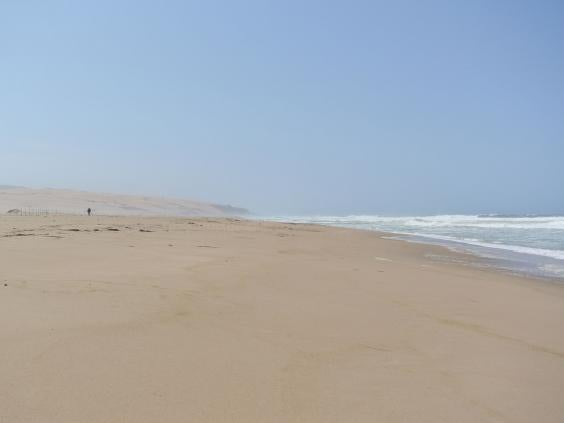Guadalupe_Dunes_County_Park_1.jpg