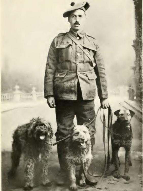 21-WW1.jpg