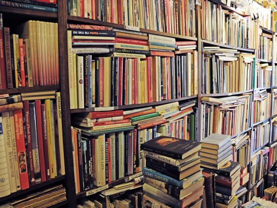 Resultado de imagen de novels