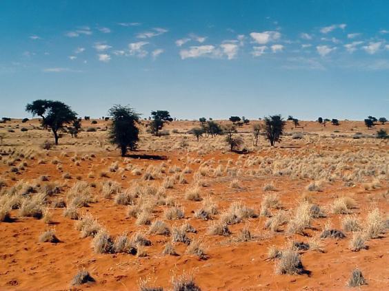 Kalahari_E02_00.jpg