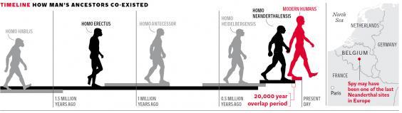 pg-20-neanderthals-graphics.jpg
