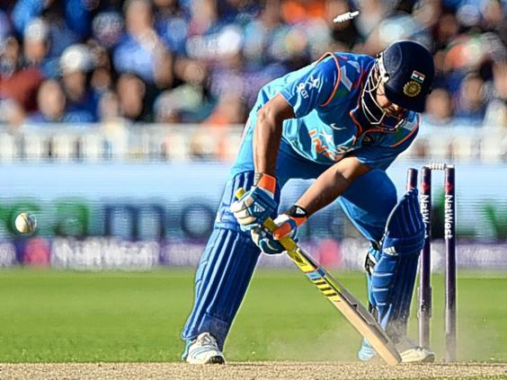 Cricket-2.jpg