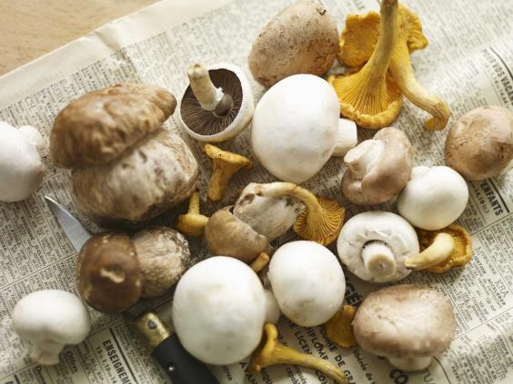 Porcini-mushrooms.jpg