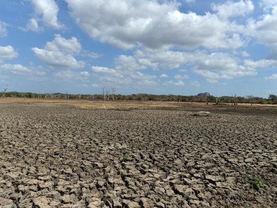 Droughts.jpg