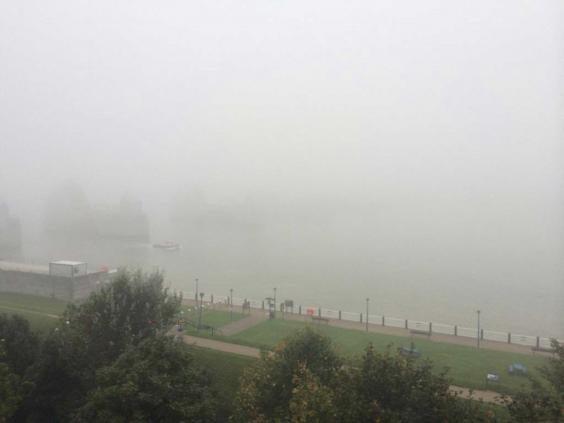 fog-twitter.jpg