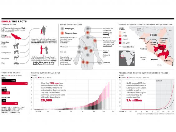 Ebola-graphic.jpg