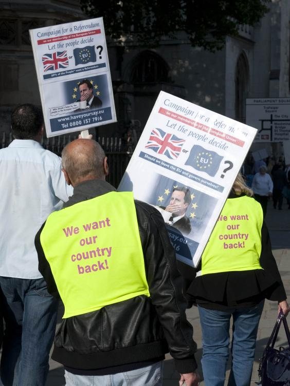 A-Demonstration-By-Ukip-Supporters.jpg