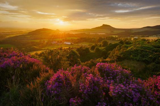 landscape-photographer-7.jpg
