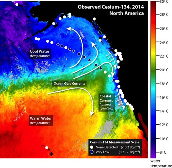 radioactive-fukushima.jpg