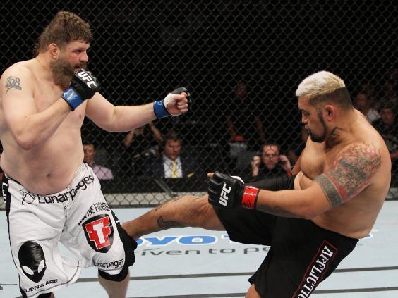 Mark-Hunt-kicks-Roy-Nelson---Mitch-Visquez-Zuffa-LLC.jpg