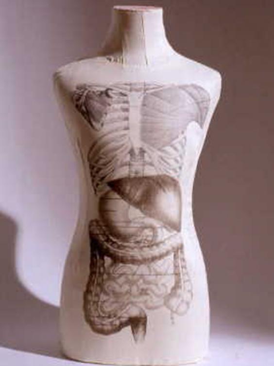 Carole-Hensher-art.jpg