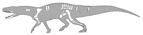 nundasuchus_1.jpg