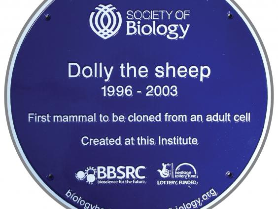 Dolly-plaque.jpg