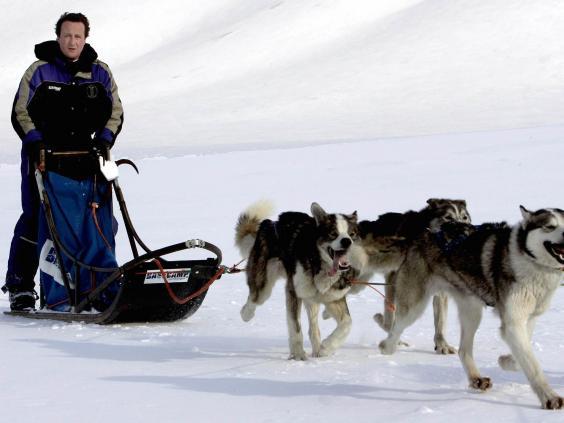 David_Cameron_dog_sled.jpg